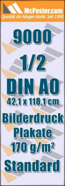 Bilderdruck Plakate 1/2 DIN A0 42,1 x 118,1 günstig online kaufen bei McPoster.com